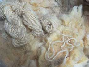 wool - raw and spun