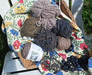 Basket of hand-spun, natural-dyed blueberry yarns.